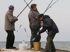 В качестве рыболовной снасти используется специальное спиннинговое удилище с...