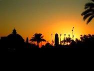 Каирский университет на закате