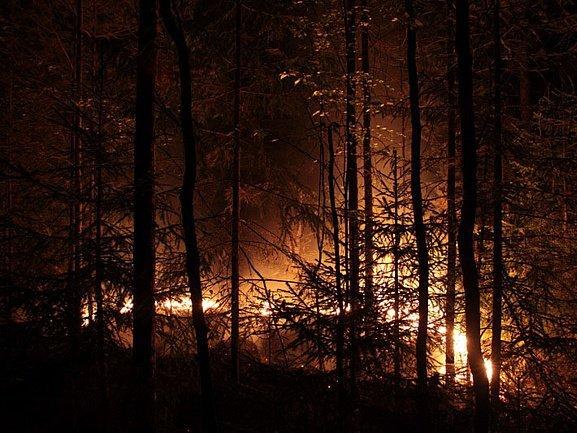 По факту пожаров в Забайкалье возбудили уголовные дела