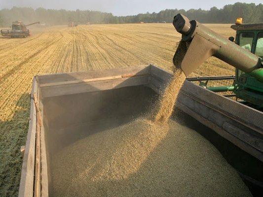 РФприравняет поддержку экспорта товаров АПК кпродукции «оборонки»— Минсельхоз