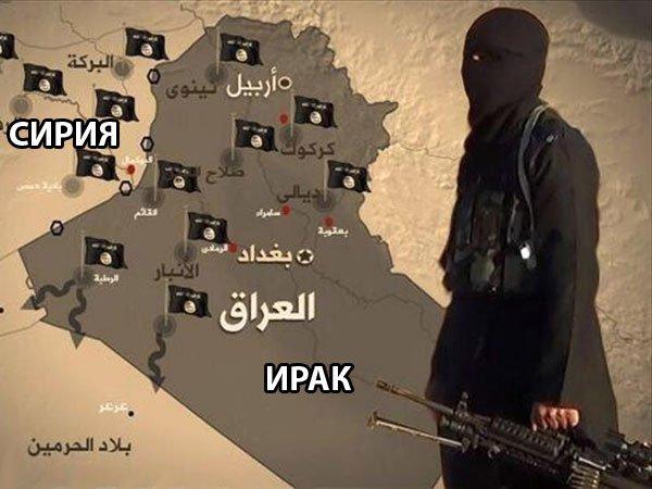 Иракские войска отбили утеррористовИГ шесть районов Мосула