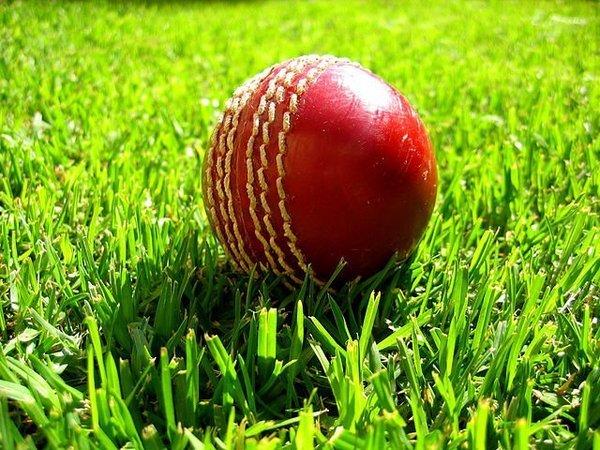 Мяч для игры в крикет