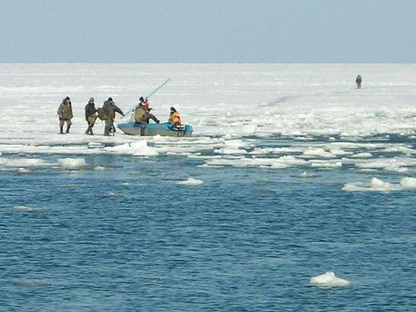 в шарыпово оторвалась льдина с рыбаками