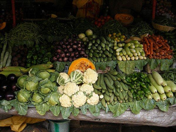 Овощи изТурции непоявятся в Российской Федерации доконца года