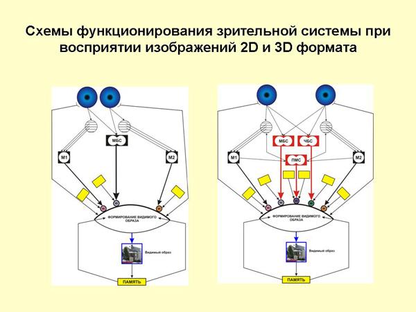 Снижение зрения на лучше видящем глазу от 0.05 до 0.2