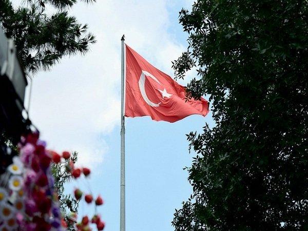 Турция стягивает дополнительные силы кгранице сСирией