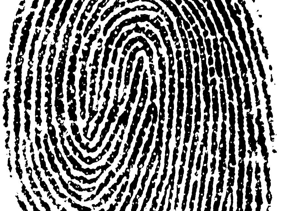 Отпечаток Пальцев