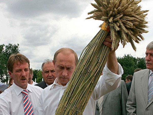 ВРФ может начаться недостаток риса