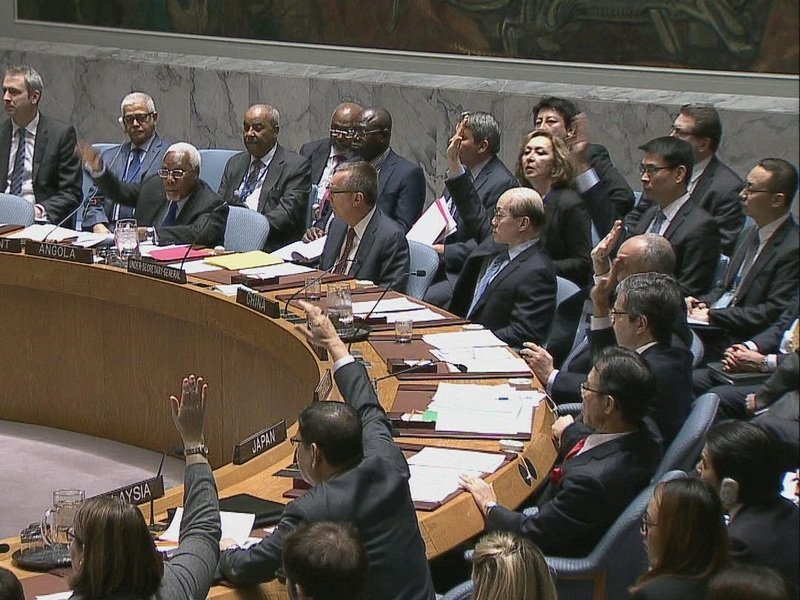 Российская Федерация заблокировала резолюцию поСирии вСовбезе ООН