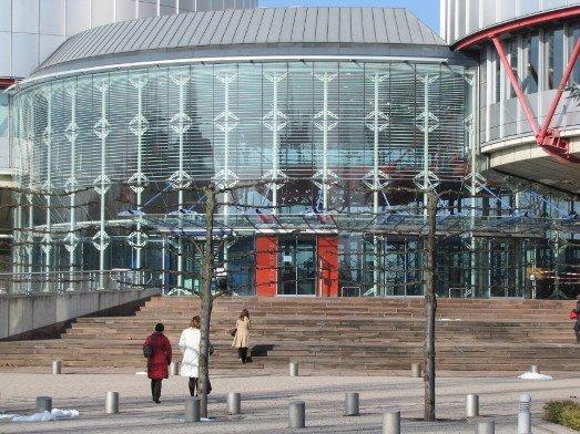 ЕСПЧ присудил компенсации пожалобам назапрет публичных акций