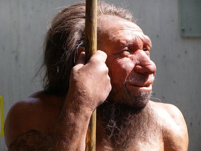 Ученые обвинили население Земли ввымирании неандертальцев