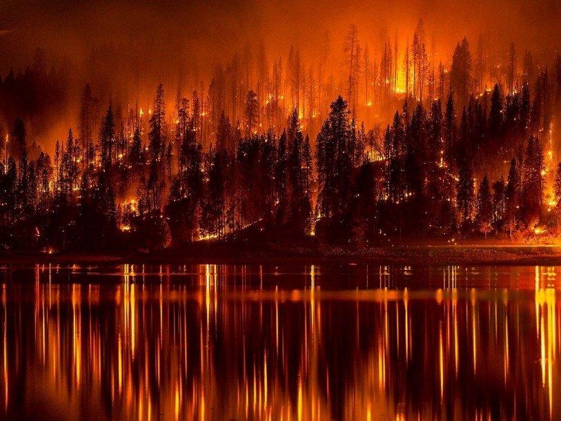 Пожары Скачать Торрент - фото 9