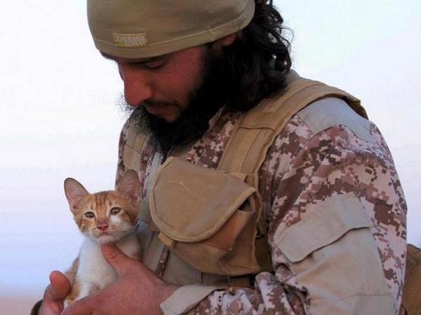 Боевики ДАИШ запретили жителям Мосула разводить кошек
