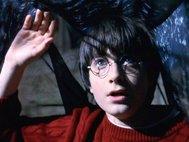 Гарри Поттер под плащом-невидимкой