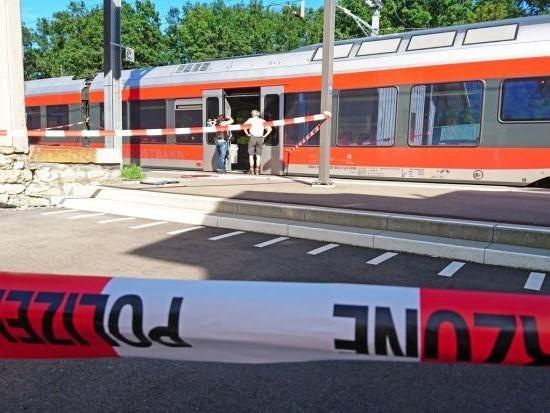 Нападение напассажиров поезда вШвейцарии