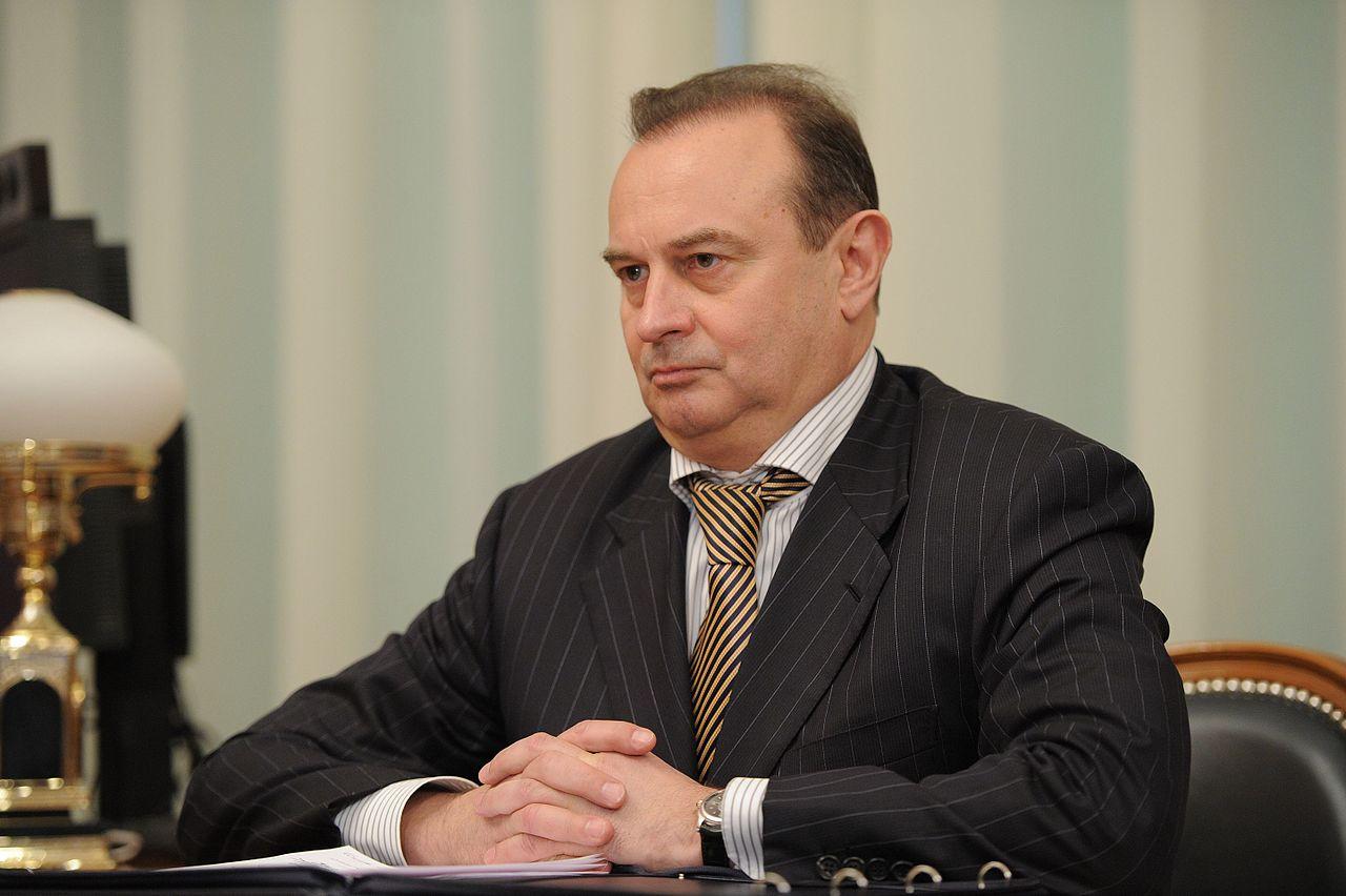 Елена Серая назначена врио министра регионального контроля