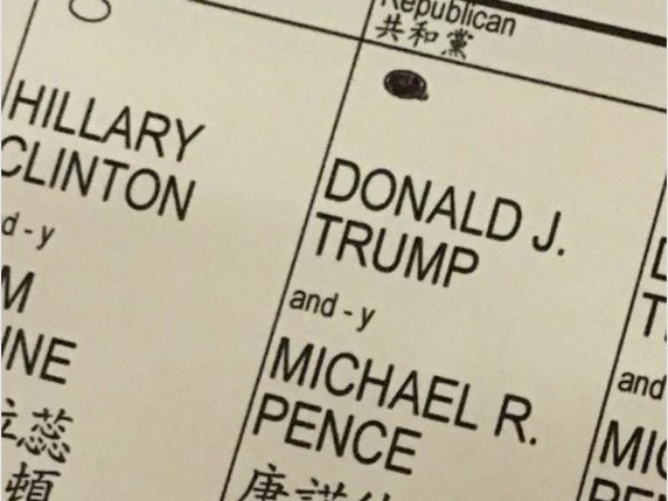 Сын Трампа обнародовал фото своего бюллетеня для голосования
