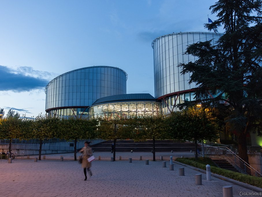 Защитники прав человека попросили ЕСПЧ оценить наказание засвастику в РФ