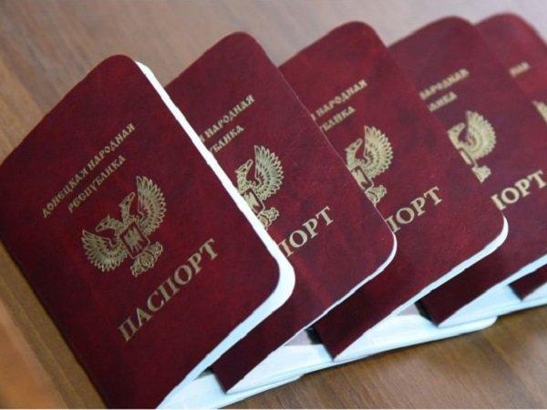 В Российской Федерации де-факто признали паспорта ДНР иЛНР