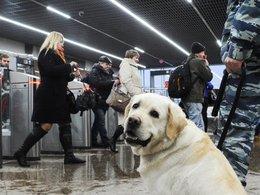 Усиление мер безопасности в Московском метрополитене в связи со взрывом в подземке Санкт-Петербурга