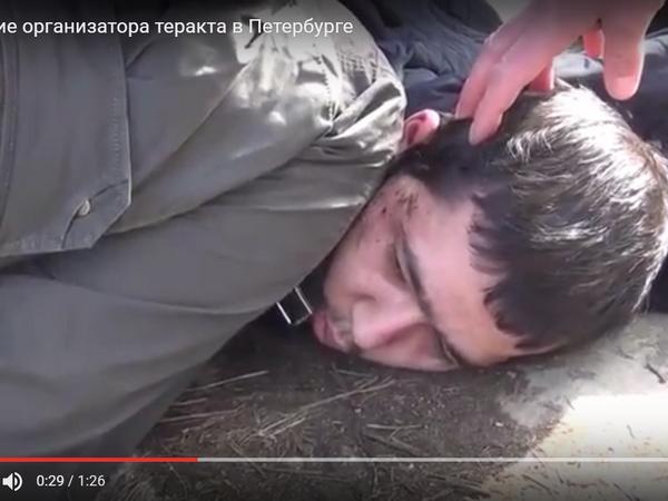 ВПодмосковье задержали одного изорганизаторов питерского теракта