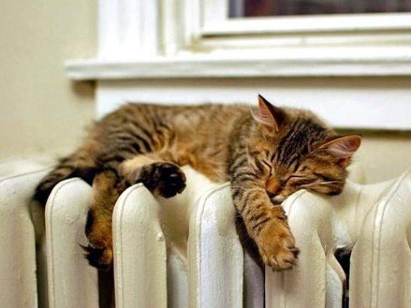 Вжилых домах в столицеРФ из-за похолодания вновь включили отопление