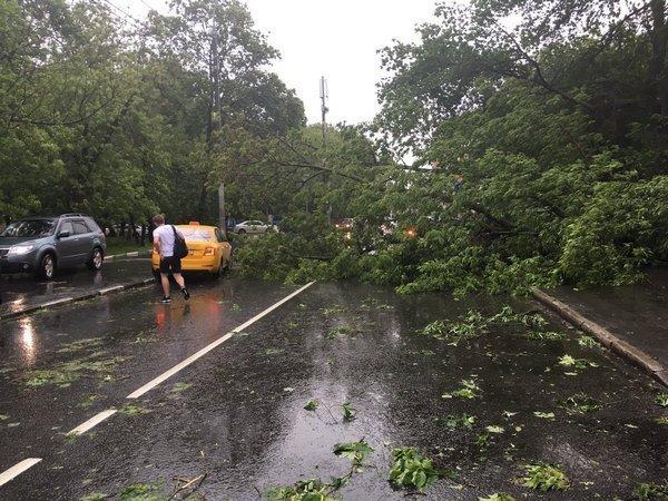 Сенаторы проверят работу Гидрометцентра вдень урагана в столице