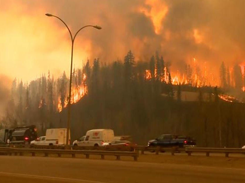 ВПортугалии объявлен трехдневный траур пожертвам лесных пожаров