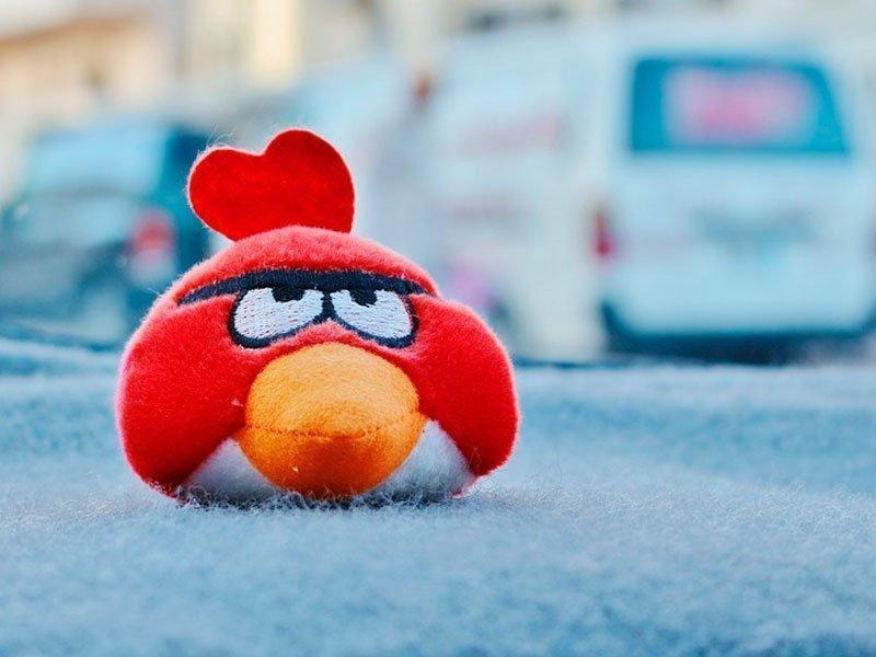 Создатель игры «Angry Birds» планирует публичную реализацию акций