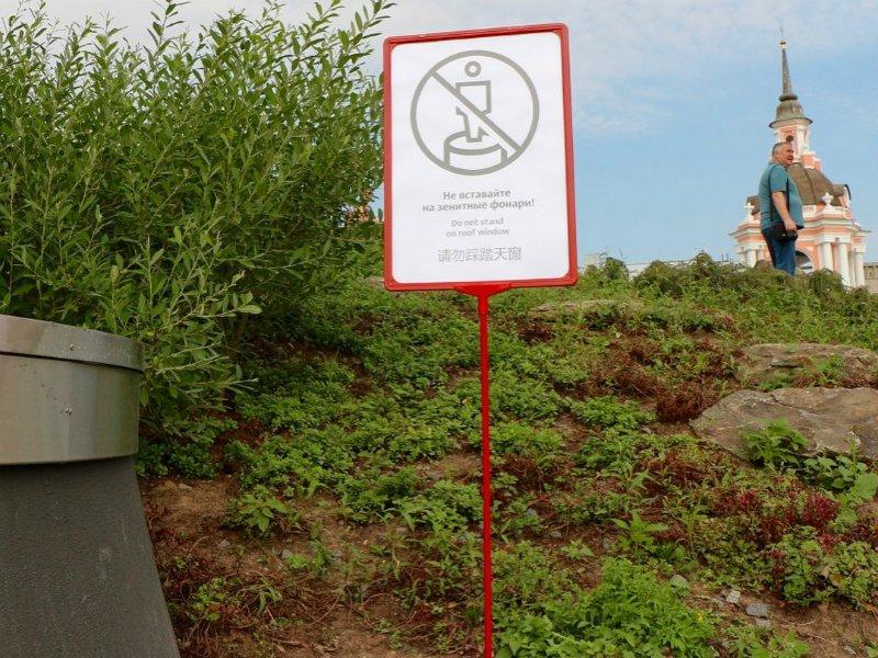 Посетители парка «Зарядье» вытоптали как минимум  10 тыс.  растений