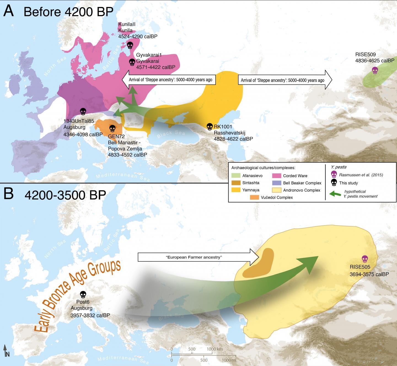 Степные кочевники занесли чуму в неолитическую Европу
