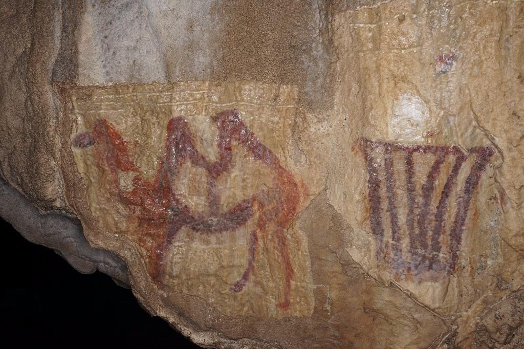 Картинки по запросу каповая пещера верблюд