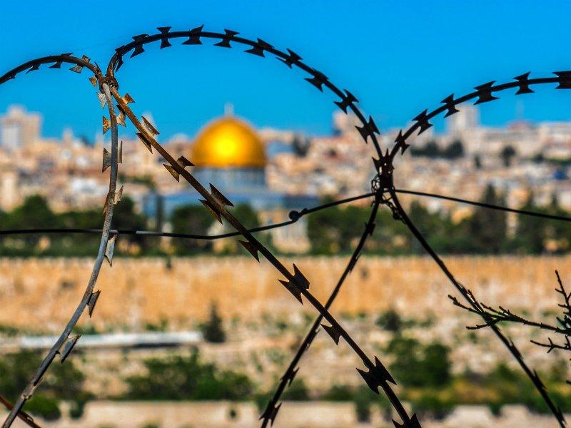 Жители Америки предлагают шейхам племен Газы квартиры вАбу Дис