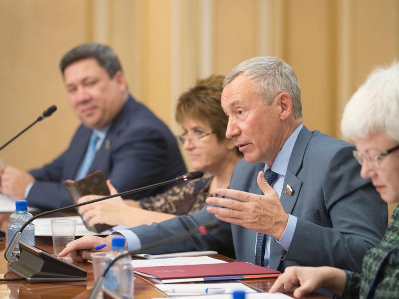 Мизулина передала онеобходимости создания альтернативы интернету в РФ