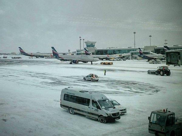 СМИ узнали ополомках 19 аэробусов «Аэрофлота» из-за снега ваэропортах