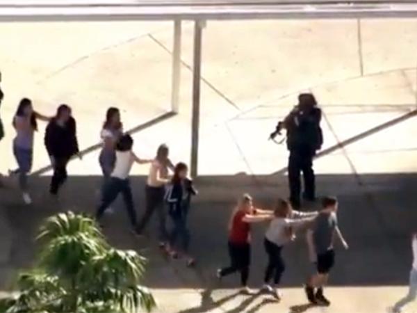 Стрельба во Флориде: данные и рефлексия