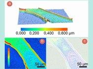 Исследование рельефа напечатанной линии: а) 3D модель; b) 2D модель (на a и b цветом обозначена высота микрорельефа); c) оптическое изображение исследуемого участка