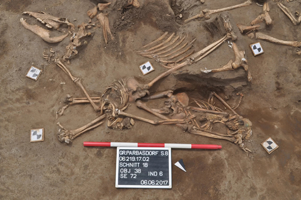 Раскопки при Ваграме