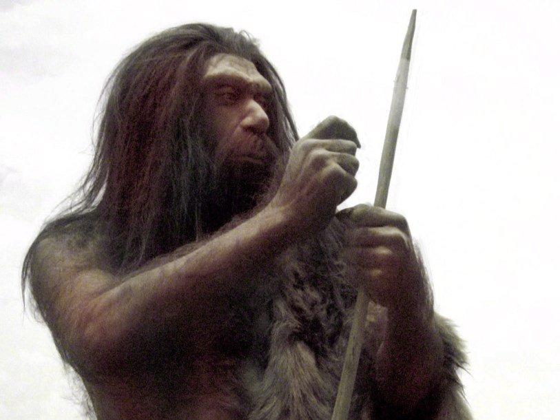 Эксперимент доказал эффективность неандертальских копий