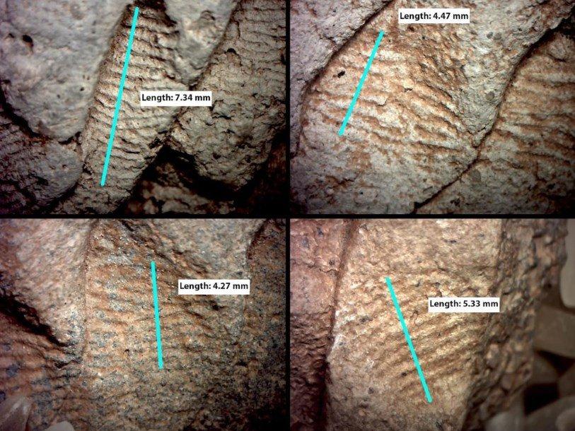 Отпечатки пальцев на древних сосудах рассказали об их изготовителях