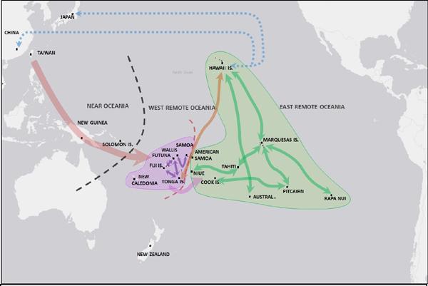 Бумажное дерево и миграции в Океании