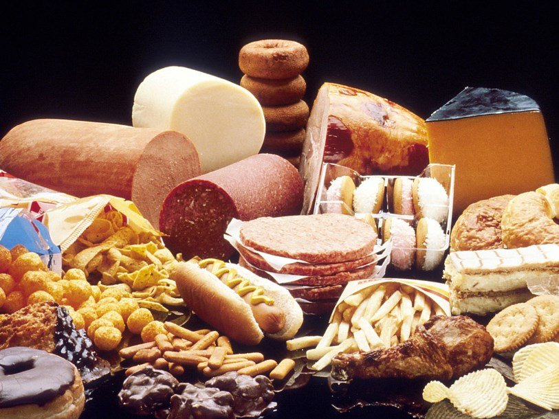 Жирная еда влияет на работу мозга и способствует перееданию