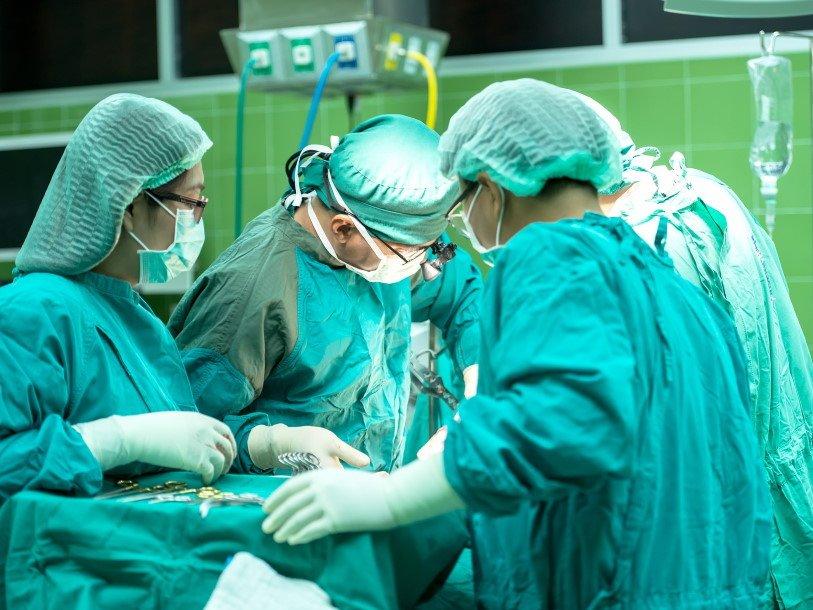 За три года учёные намерены сделать свиное сердце пригодным для пересадки человеку
